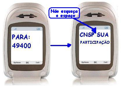 sms2-2.JPG