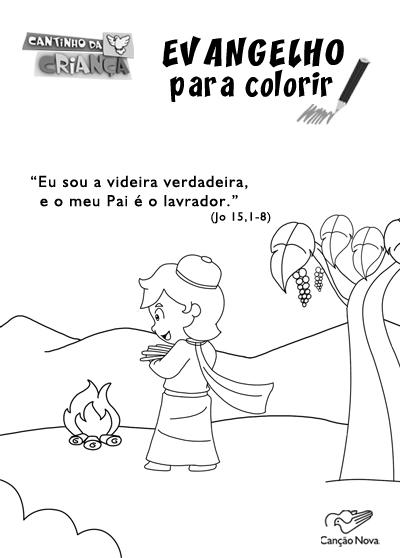 evangelho de domingo