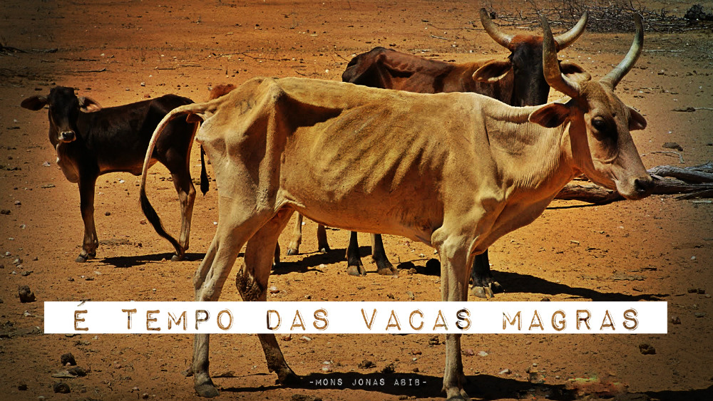 vacas-magras