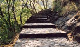 escada, lectio, degrau, bíblia, monge