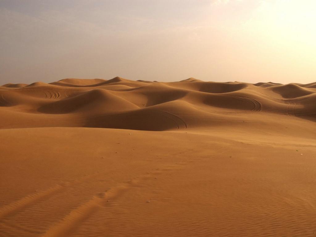 http://blog.cancaonova.com/discipulosemissionarios/files/2010/12/deserto.jpg