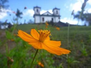 flor igreja