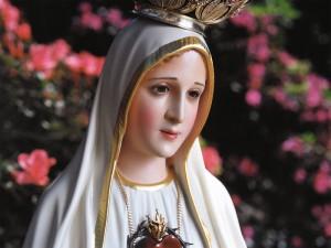 Papa-Substitui-o-Espírito-Santo-Pela_Nossa_Senhora_de_Fátima