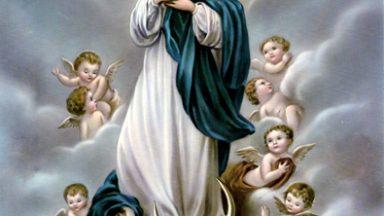 Por que Nossa Senhora foi concebida sem pecado?