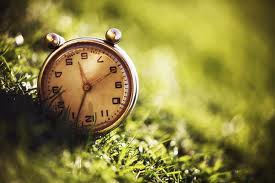 Eu quero ser amigo do tempo