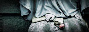 Diante da Virgem Maria, o Demônio estremece!
