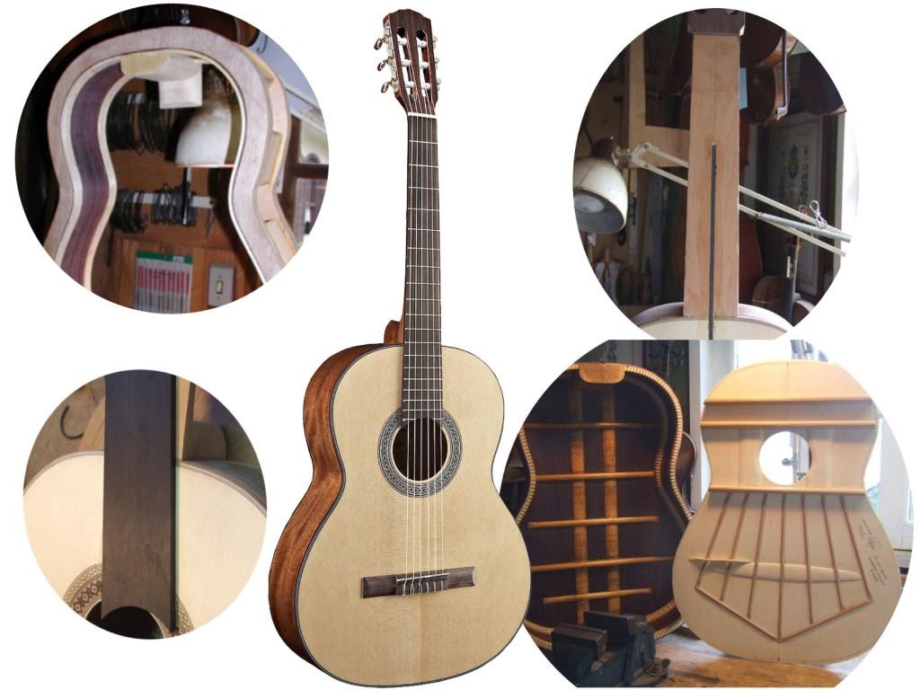 Anatomia do violão