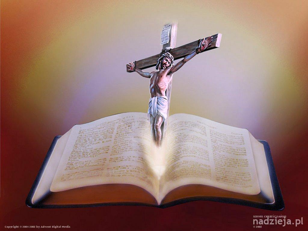 El Matrimonio Biblia Catolica : Por que jesus cristo é o centro da bíblia padre
