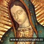 Maria acompaña el camino de sus hijos, dice el Papa