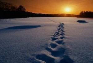 Caminhe com Cristo