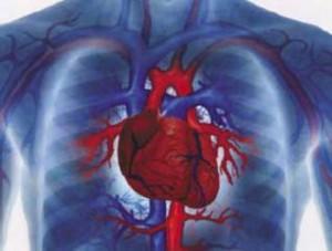 adultos-Cardiovascular_Diseases_420476409