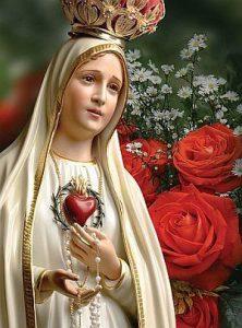 São Luís oferece uma Roseira Mística para devotos da Virgem Maria