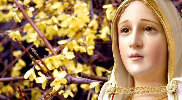 Conheça o testemunho de Angelina Carraro, uma mulher que diz com convicção: meu espelho há de ser Maria, visto que sou sua filha!