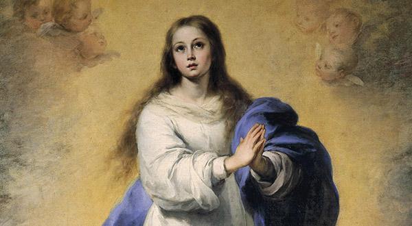 Neste artigo, respondemos perguntas de uma leitora do Blog sobre a oração do Ofício da Imaculada Conceição e a devoção a Nossa Senhora.